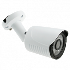 Уличная 4 в 1 (AHD/CVI/TVI/Аналог) камера Altcam DCF11IR